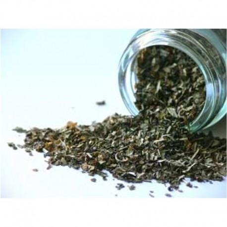 Basilic - Pot de 12gr