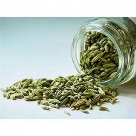 Fenchel in Samen - Glas mit 45gr