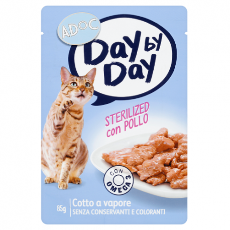 ADOC Day by Day Chat Chat Ster...