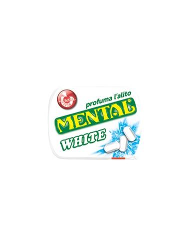 Mental White - 24 boites de 17 gr