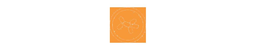 Vente en ligne de levures et essences aromatiques - Oeufs, farines et préparations - Pelignafood.it - Pelignafood
